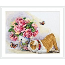 Bulldog and Butterflies