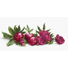 Peonies and Red Apples