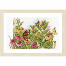 Butterflies and Cone Flowers (Evenweave)