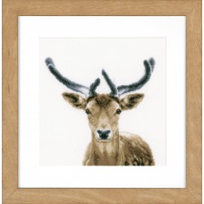 Counted Cross Stitch Kit: Deer