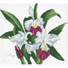No Count Cross Stitch - Bouquet of Orchids