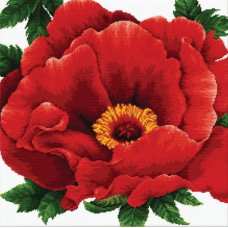 No Count Cross Stitch - Peony